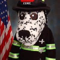 Hot Dog Fire Safety Dog official pic